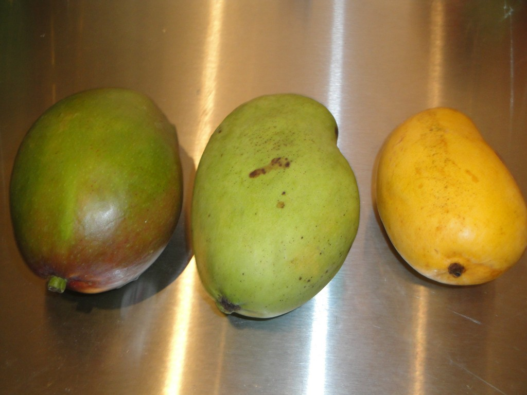 3 Different Types of Mangoes
